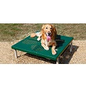 Click here for more Paws Table by UltraPlay by Worthington