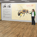 Click here for more Sharewall Spline Whiteboard Panel System by Best-Rite by Worthington