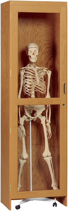 3132422-diversified-woodcrafts-rollin-skeleton-cabinet