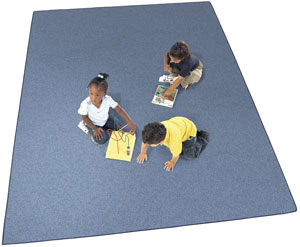 80v-12x18-endurance-area-carpet