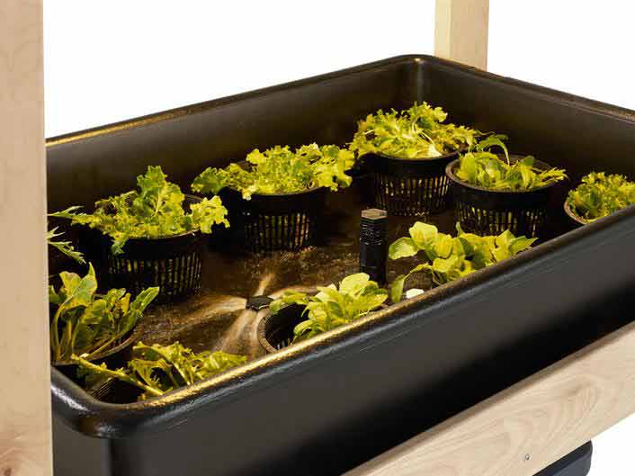 Hydroponics containment tray