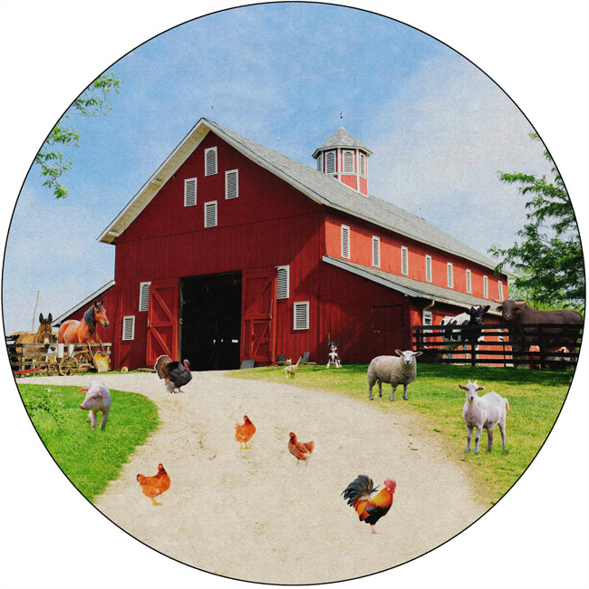 12-round-barn-animals-carpet