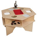 Deluxe Science Activity Table by Wood Designs